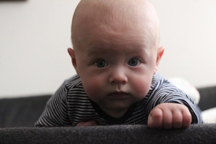 Oskar 4 months old