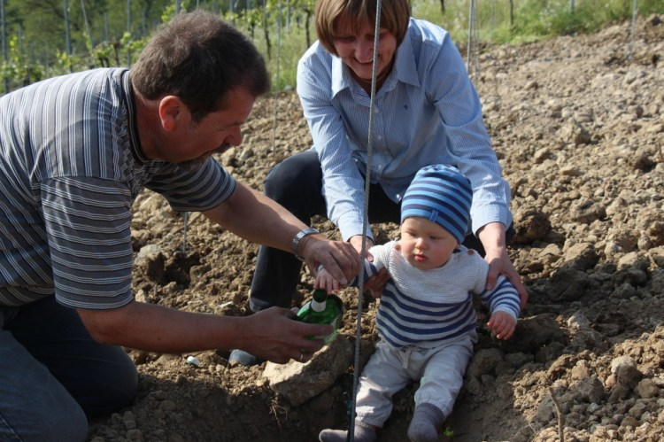 "Oskar & his grandparents ""water"" the last vine"