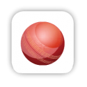 cricket apps icon