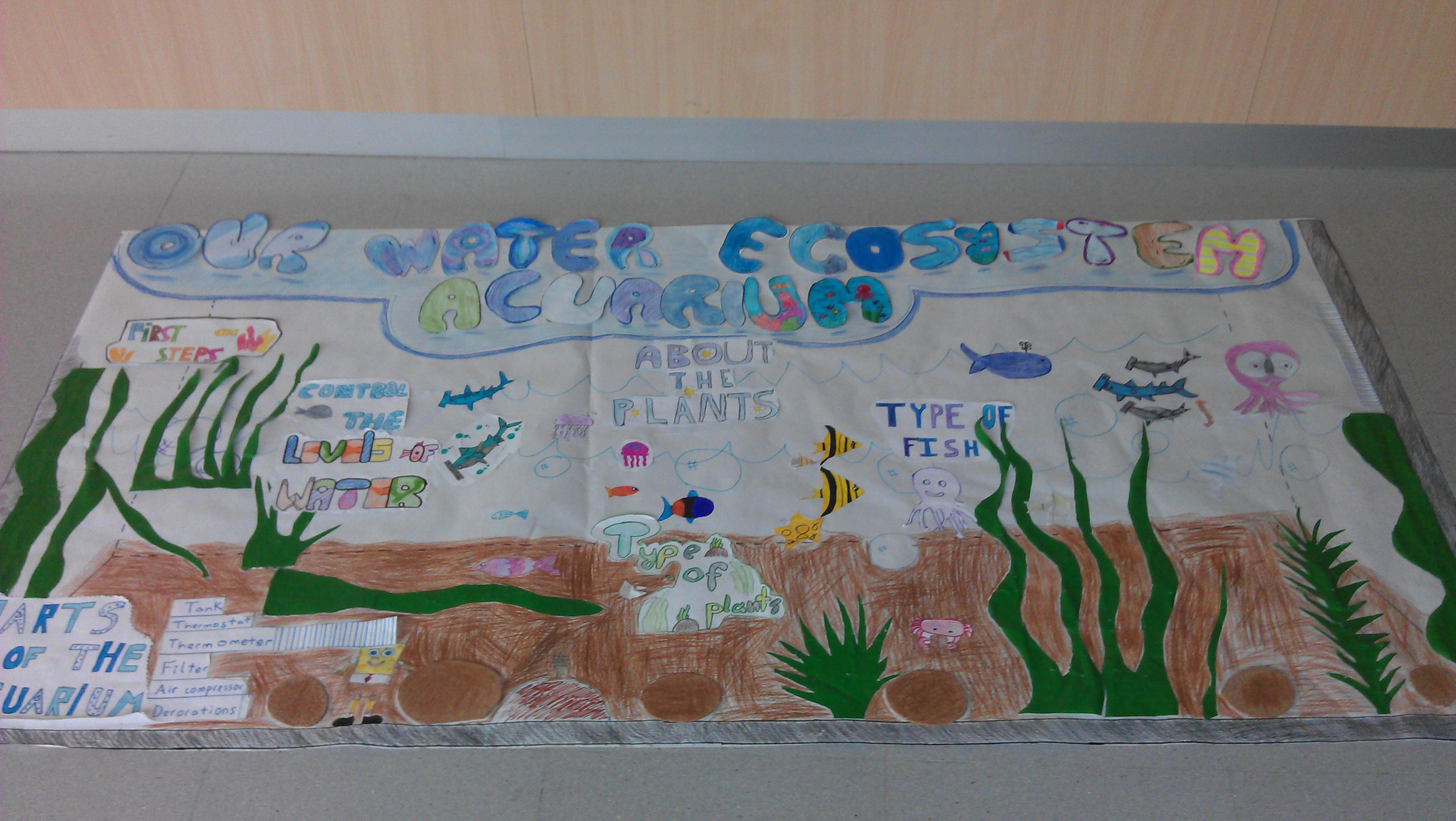 Ecosystem Project Gallery