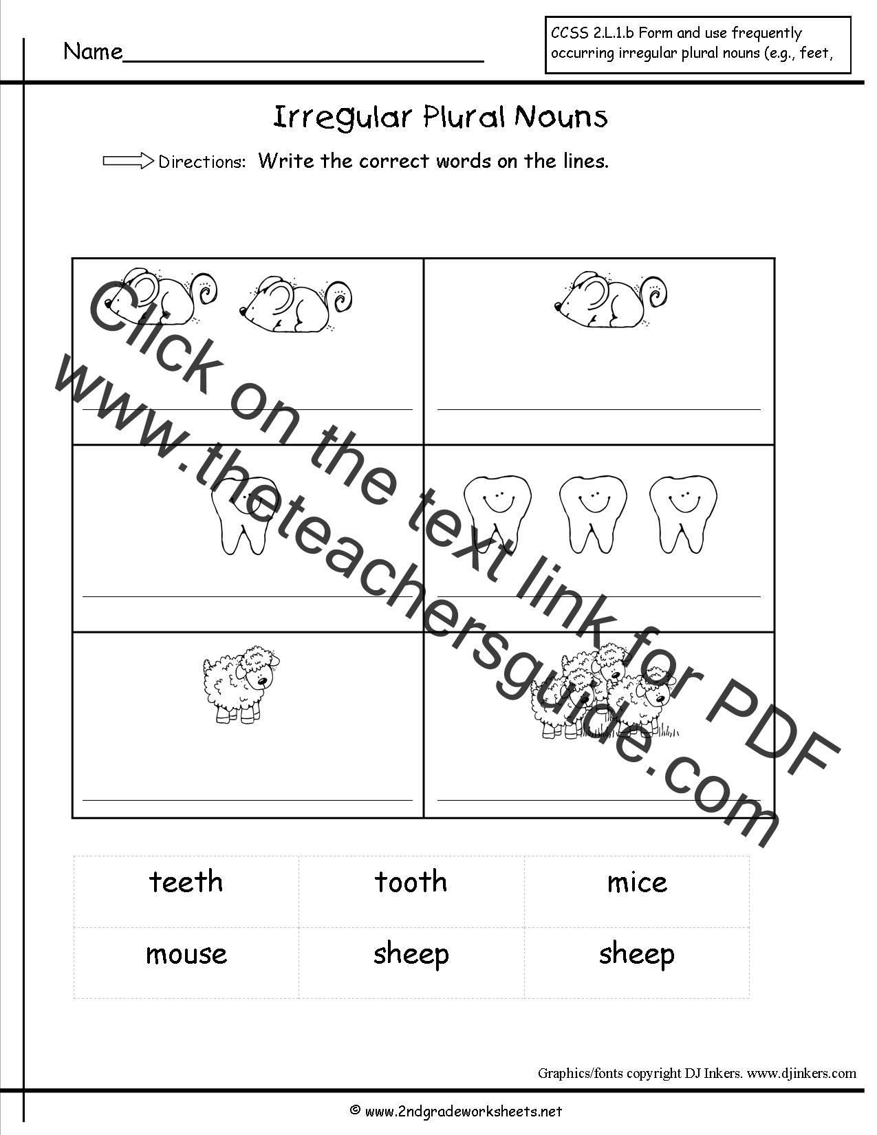 35 Irregular Plural Nouns Worksheet For 3rd Grade