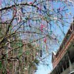 In New Orleans the Trees Drip with Marti Gras Beads
