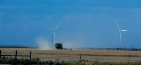 Mowing the lawn under the turbines?