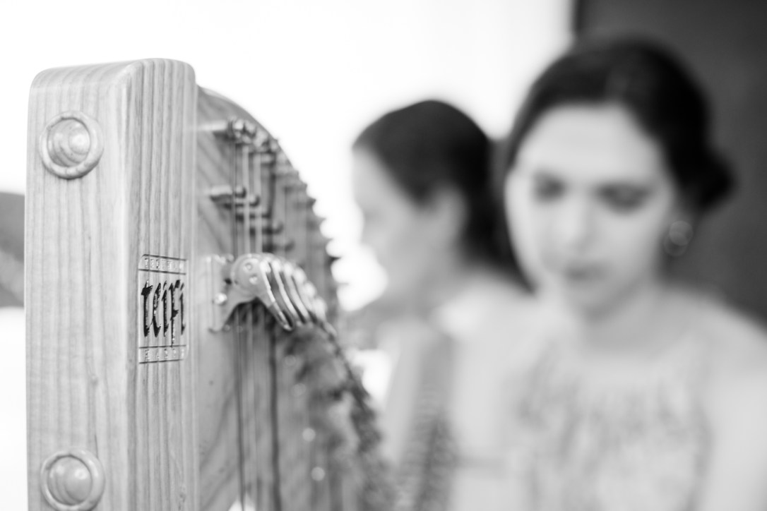Teifi eos harp played by Adel, wedding harpist, blurred in the background