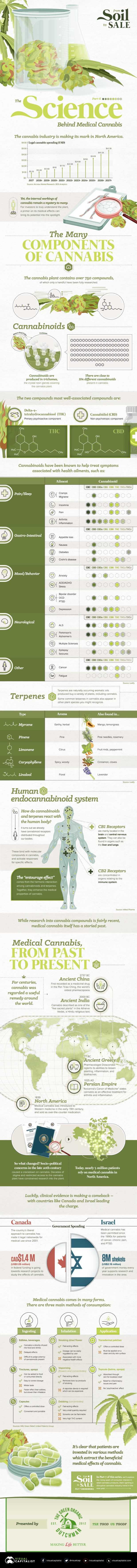 The Science Behind Medical Cannabis