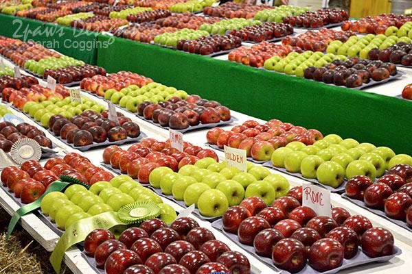NC State Fair 2013: Apples