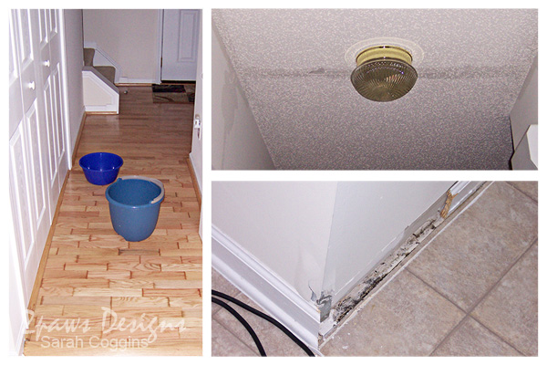 Water Damage: Hallway & Half Bath