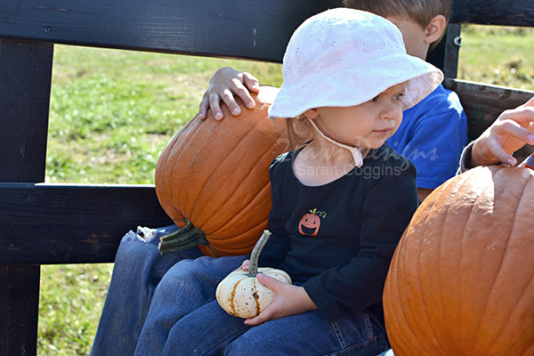 Pumpkin Birthday Party: pumpkins on the hayride