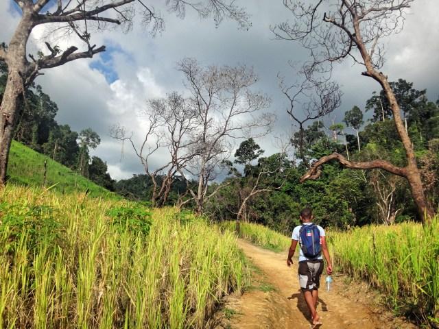 Hiking through some rice fields en route to Nagkalit-Kalit Falls.