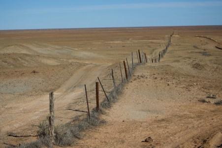 The Dog Fence.
