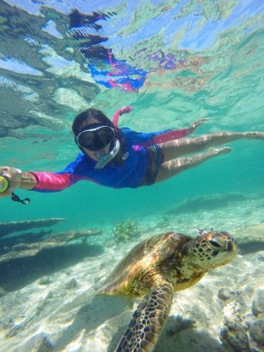 Turtle selfie!