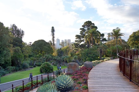 View from the gardens.
