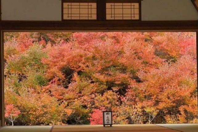 ankoku-ji