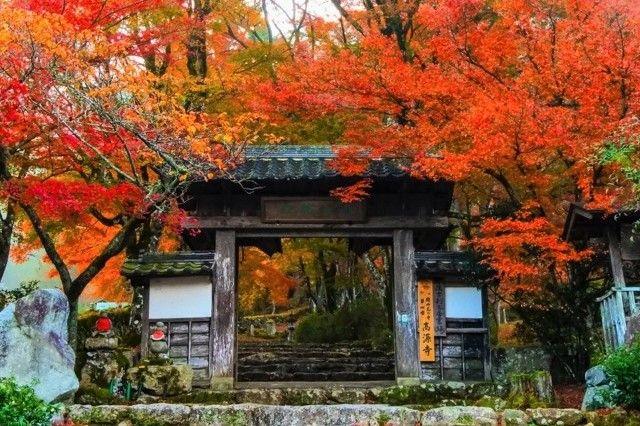 kogen-ji gate