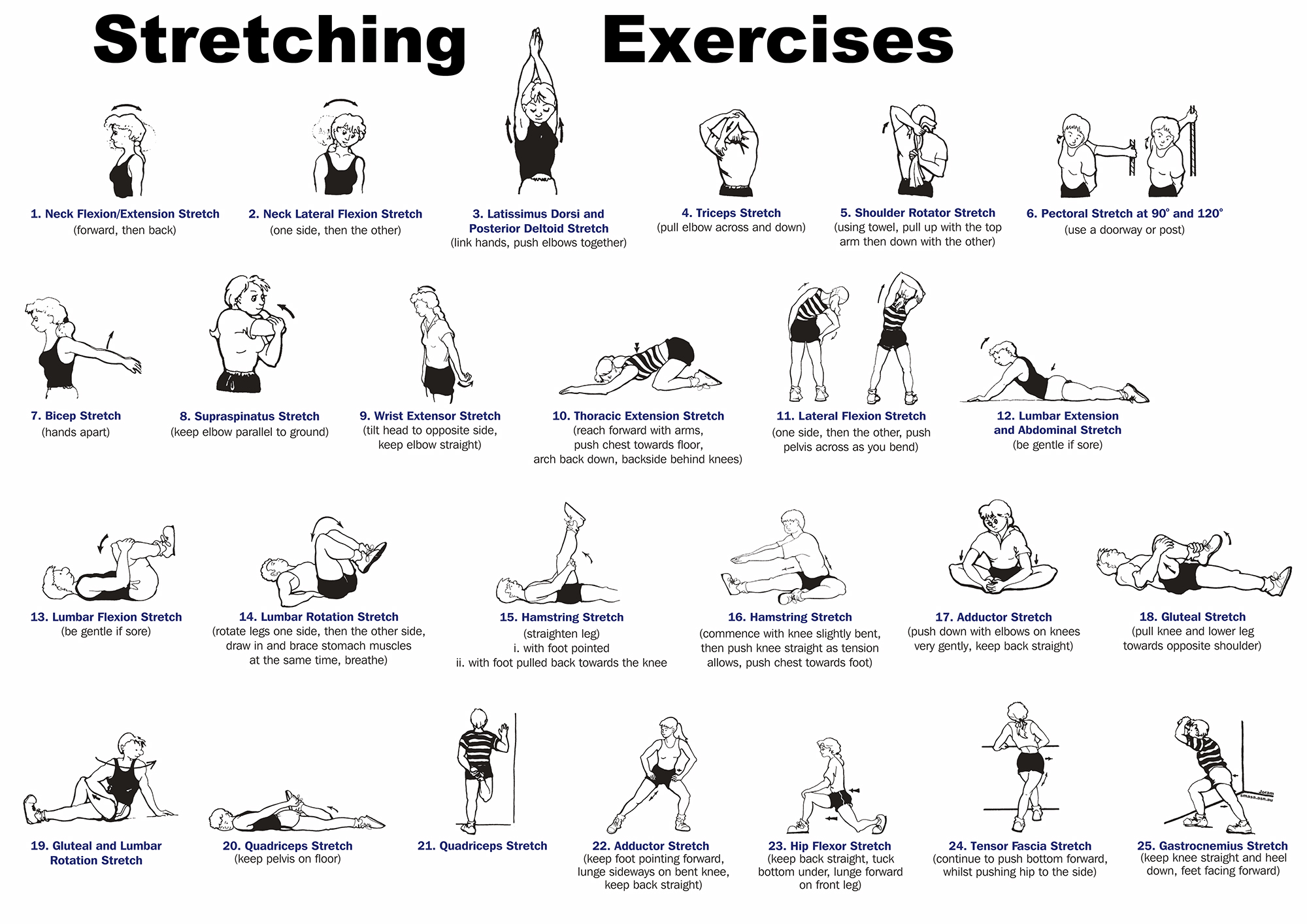 Daily Stretching Exercises