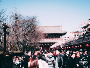 Road to Sensoji Temple, with a lot of food and souvenir stalls.