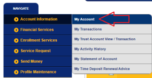 BDO Online Balance Inquiry: Fast, Easy, and Convenient - Send Money