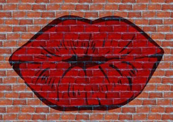 lips:wall_kiss-225402_640