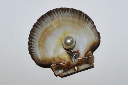 pearl-736479_1280