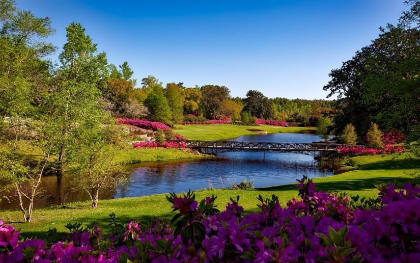 bellingrath-gardens-1612728_1280
