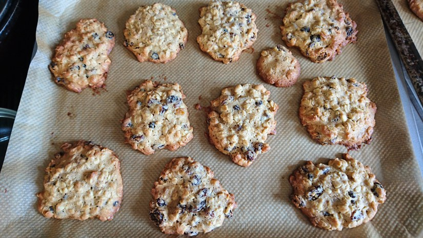 home made oat and raisin cookies