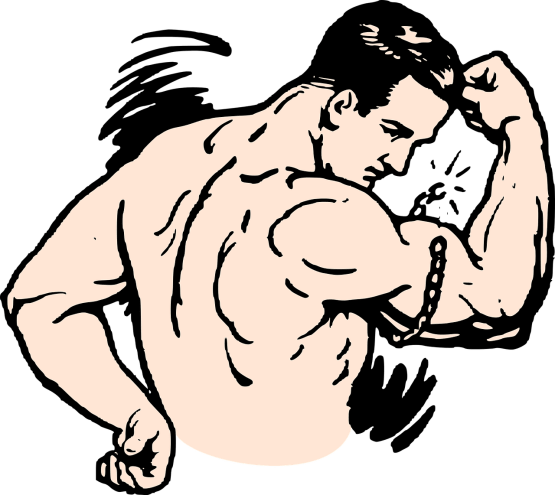 muscles-lineart_OpenClipart-Vectors