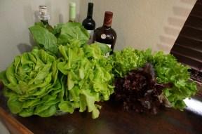 Six heads of lettuce (I guess I should've moved the bottles!)