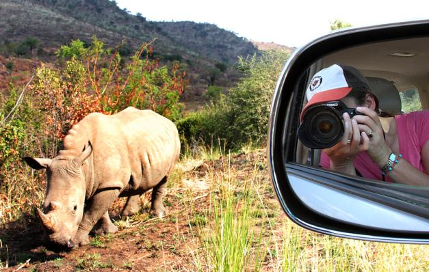 rhino rearview