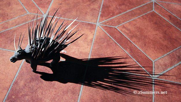 Bob the porcupine