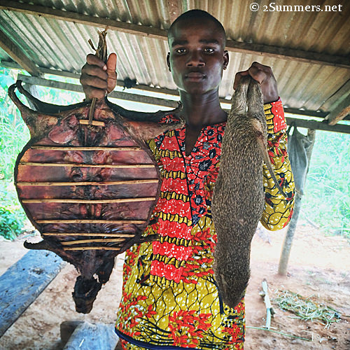 Pop-Up Travel: Cane Rats in Ghana