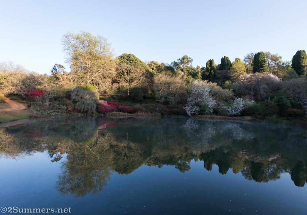 Reflection at Cheerio Gardens