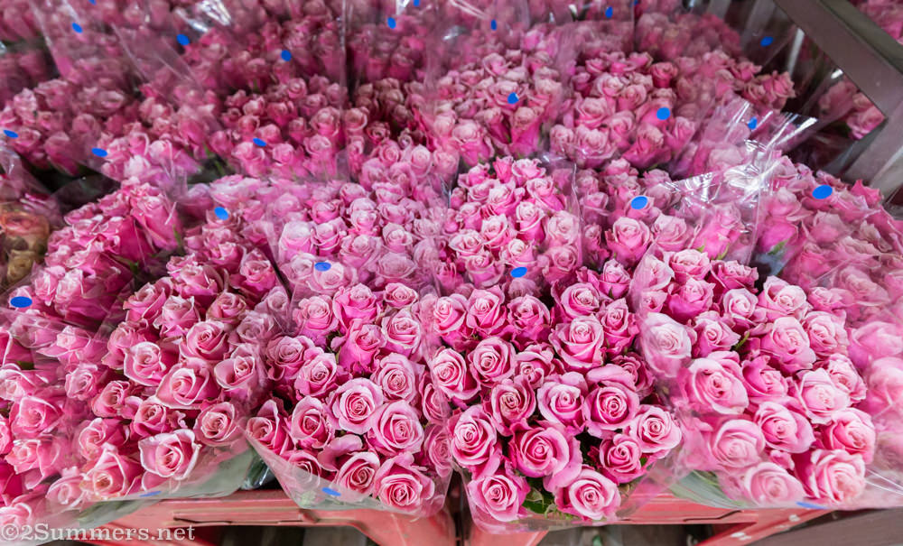 Pink roses at the Multiflora Market