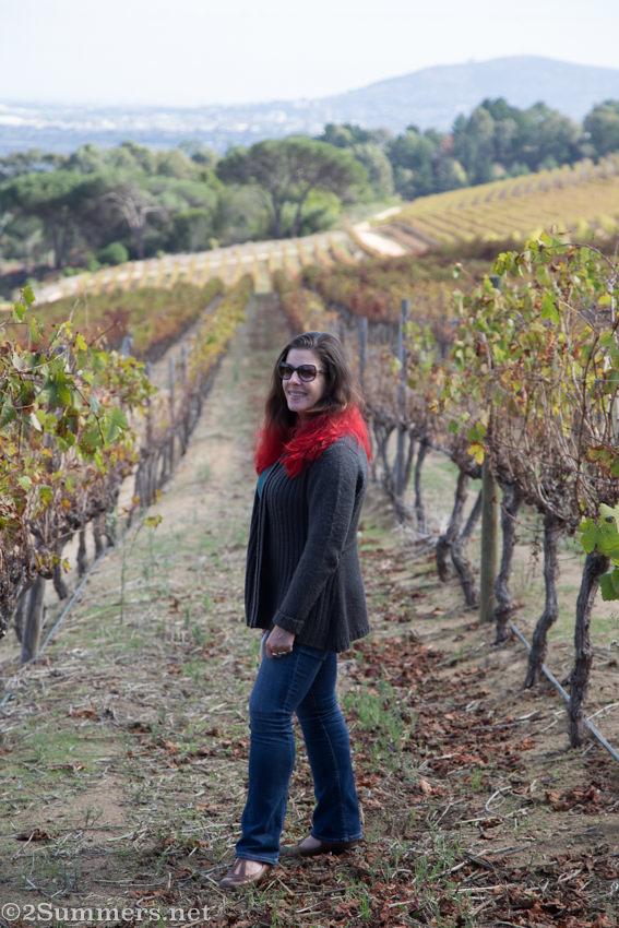 Heather in the vineyard