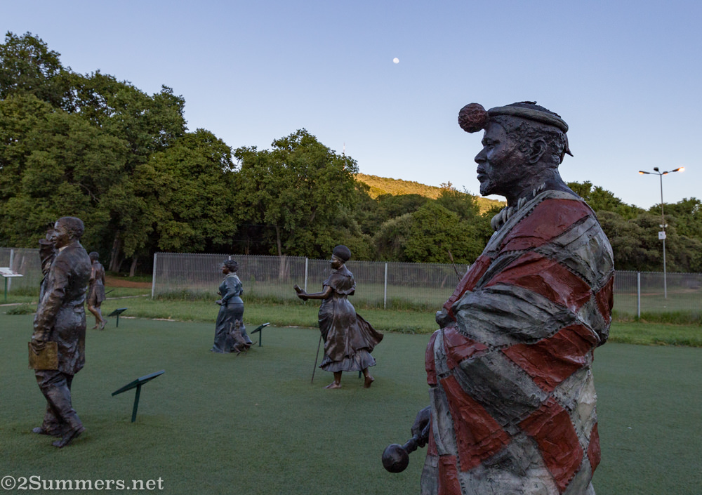 Cetshwayo kaMpande in the Long March to Freedom
