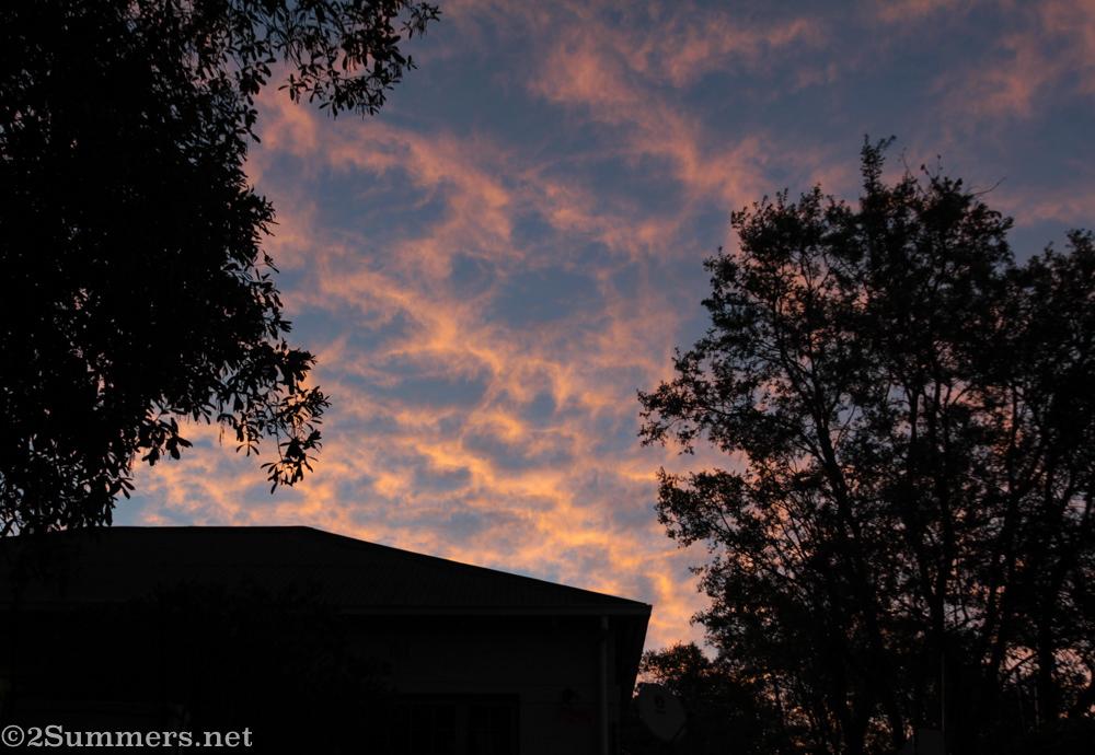 Winter sunset in Melville
