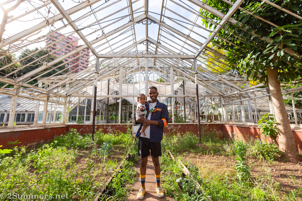 An Organic, Vegan Exploration of Joburg