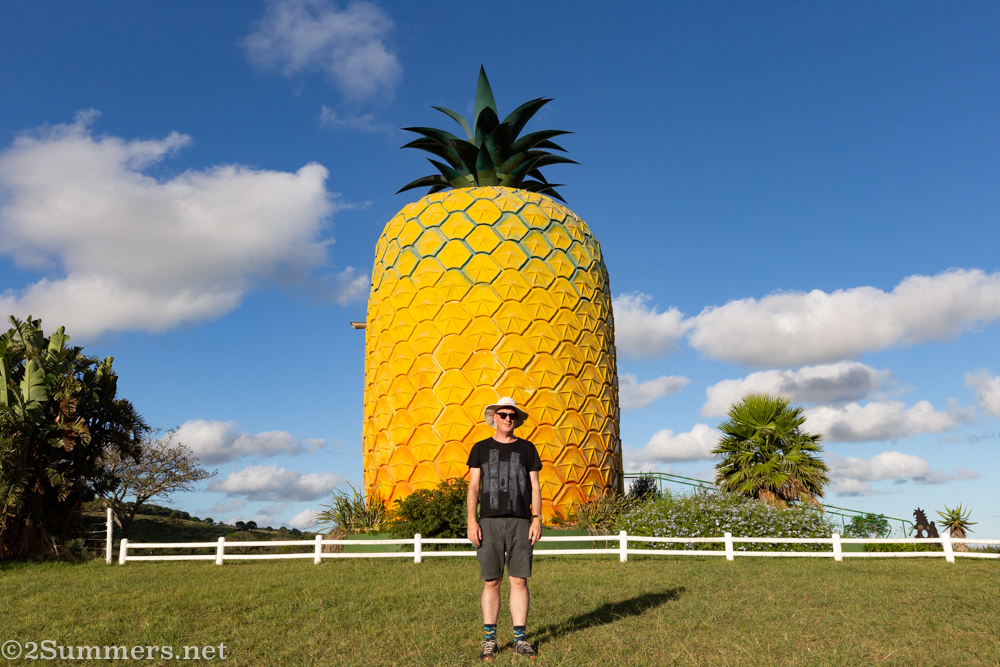 Thorsten at the Pineapple