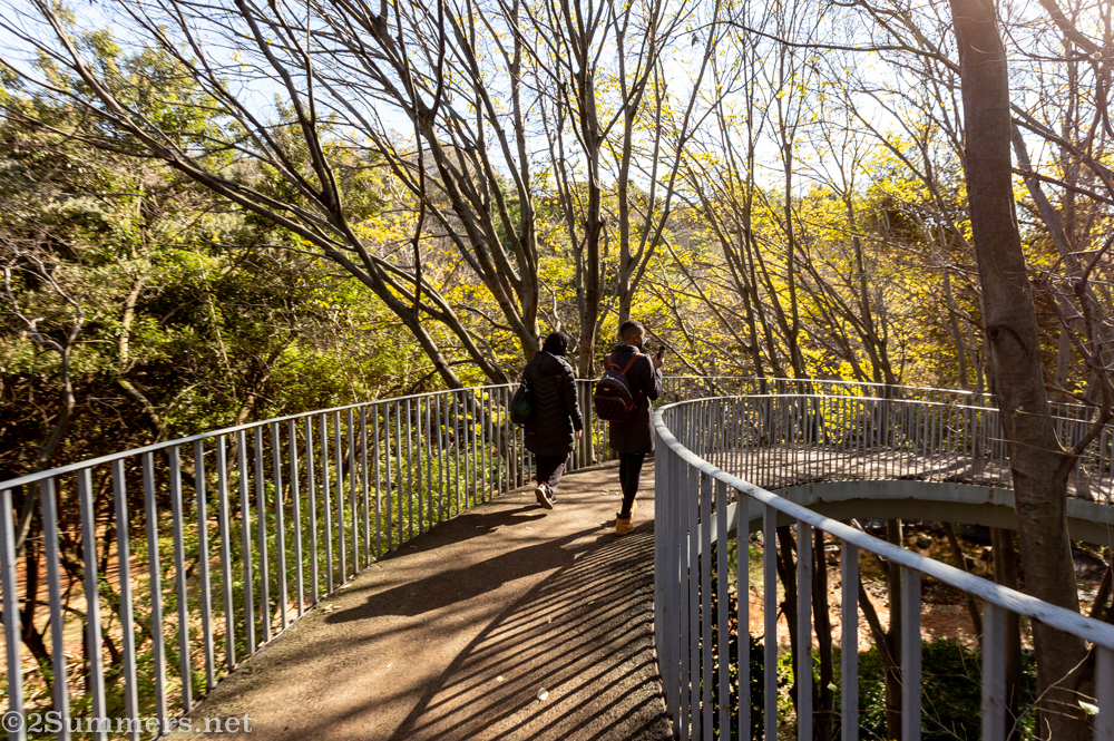 Visiting the Wilds With Joburg Tourism