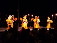 One of the dances performed at the Luau