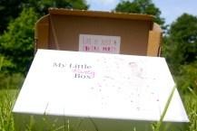 LittlePartyBox - La Box de Juin!