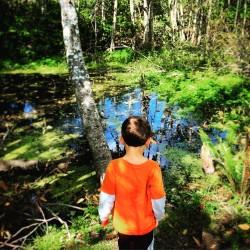 Dude Swamp Fish Park Poulsbo