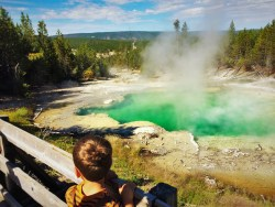 LittleMan at Emerald Spring Norris Yellowstone 1