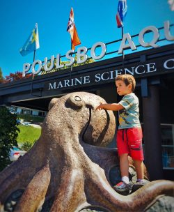 LittleMan and Octopus Sculpture Poulsbo Aquarium 2
