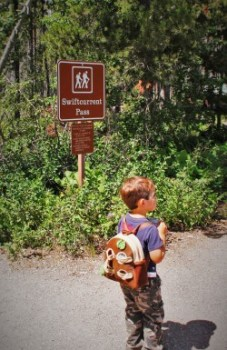 LittleMan hiking Swiftcurrent Pass trail Glacier National Park