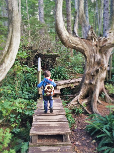 LittleMan on Trail at Cape Flattery Olympic Peninsula 3