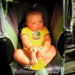 TinyMan in Stroller Yellowstone 1