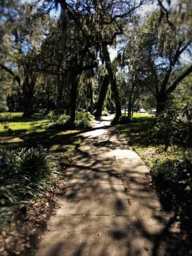 Bike Path while Biking St Simons Island GA 2