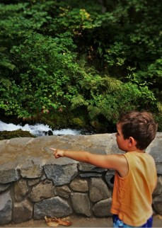 LittleMan at Wahkeena Falls Columbia Gorge Oregon