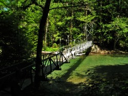 Suspension Bridge over Ohanapecosh River Mt Rainier National Park 2traveldads.com