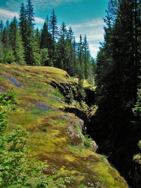 Van Trump Creek Gorge in Mt Rainier National Park 2traveldads.com